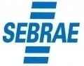 SEBRAE 2020